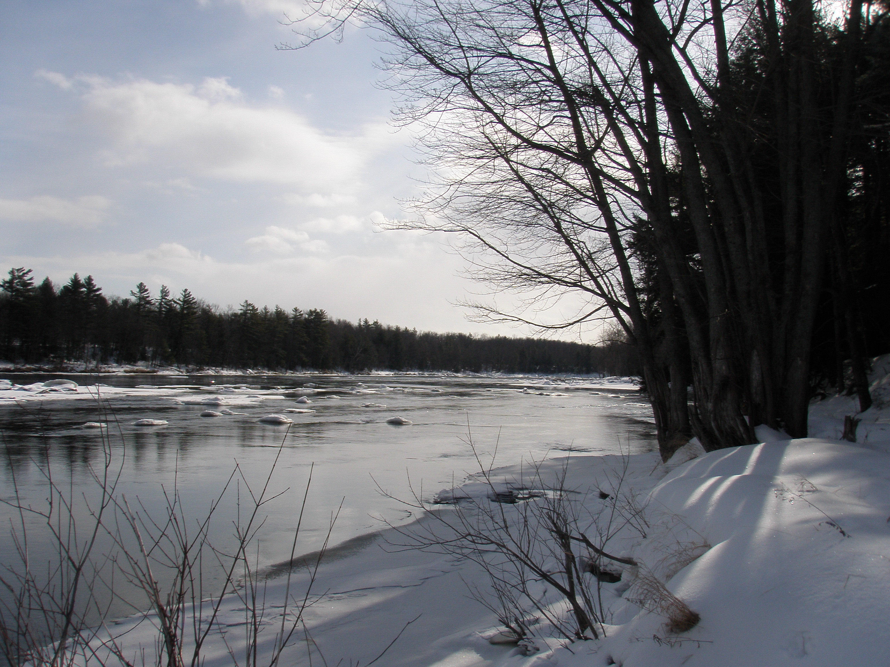 Androscoggin River - Tolly Wolly